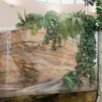 Choosing An Indoor Water Feature
