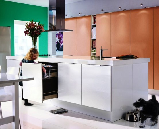 ikea-2010-kitchen-design-ideas5