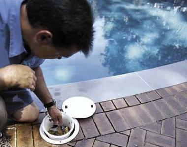 Pool Maintenance for Summer 2012