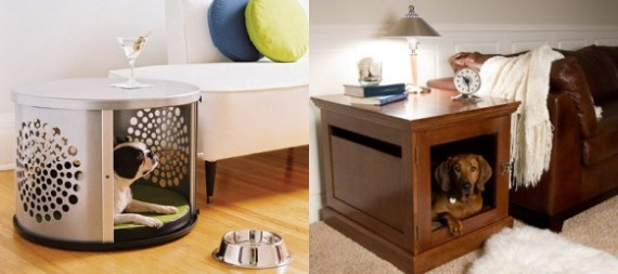 Design an Indoor Paradise for Your Dog