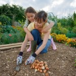 How To Prepare For Fall Gardening