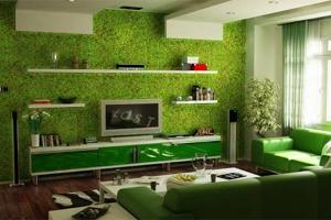 How to Maintain Eco-Friendly Wallpapers